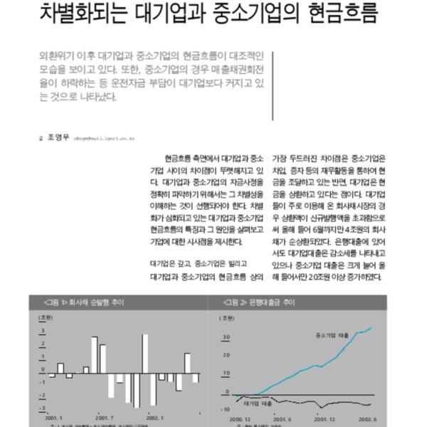 차별화되는 대기업과 중소기업의 현금흐름 [LG주간경제 690호 2002.08.28]
